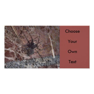 Scary Halloween Spider Card