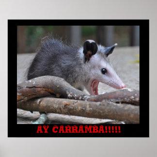 Scary Possum - Poster