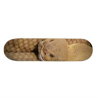 Scary Rattlesnake Photo Skateboard
