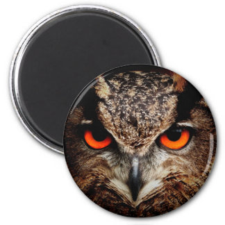 Scary Red Eyes Eagle Owl Magnet