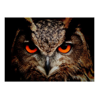 Scary Red Eyes Eagle Owl Print
