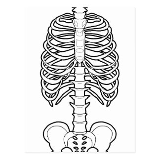 Scary Skeleton Halloween Postcard