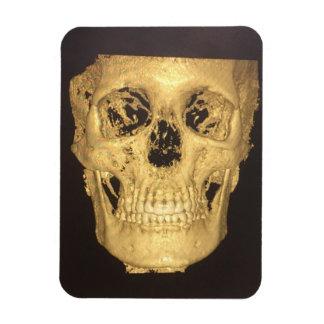 Scary Skull Magnet