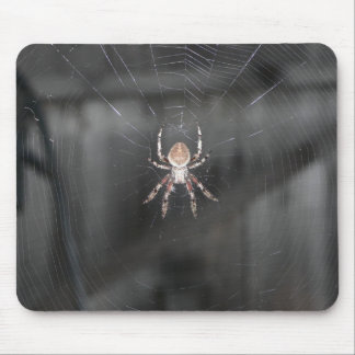 Scary Spider Mouse Pad