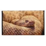 Scary Spotted Rattlesnake iPad Folio Cover