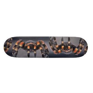 Scary Tarantula spider Skate Board