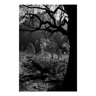 Scary tree in the mountains poster