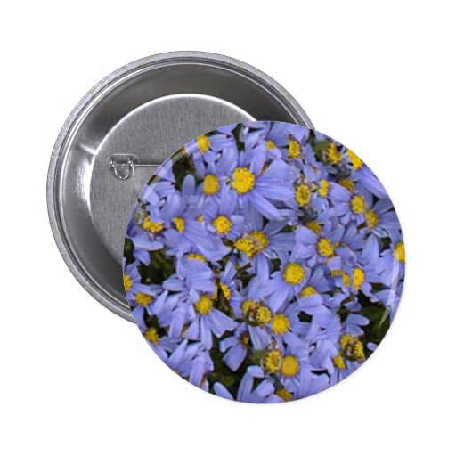 Scattered bunch of blue daisies, very pretty! buttons