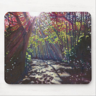 Scattered light 2013 mouse pad