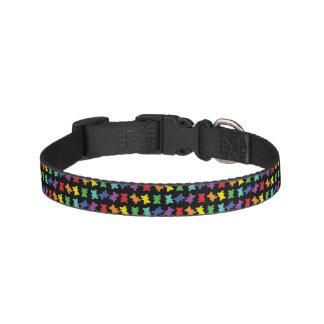 Scattered Rainbow Teddy Bear Collar on Black