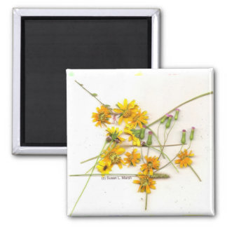 Scattered wildflowers in yellow and white 2 inch square magnet