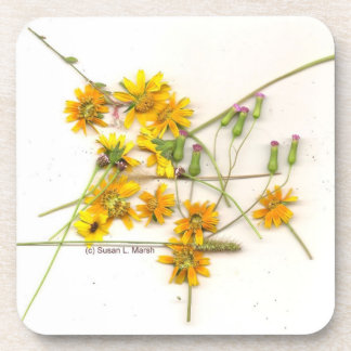 Scattered wildflowers in yellow and white beverage coasters