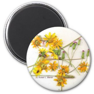 Scattered wildflowers in yellow and white magnet