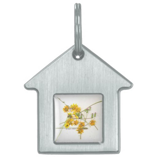 Scattered wildflowers in yellow and white pet tags