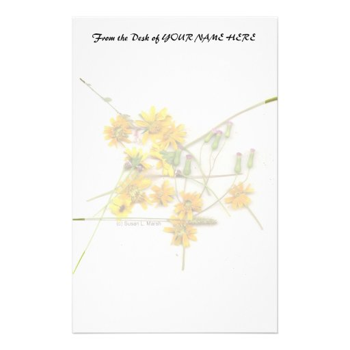 Scattered wildflowers in yellow and white stationery