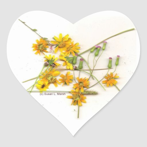 Scattered wildflowers in yellow and white heart stickers