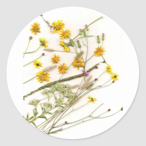 Scattered yellow wildflowers from Florida Classic Round Sticker