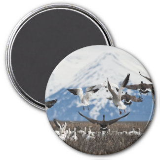 Scattering Geese 3 Inch Round Magnet