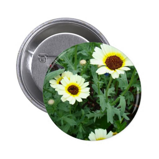 Scattering of Daisies Pin