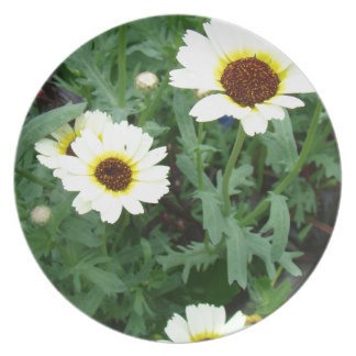 Scattering of Daisies Plate