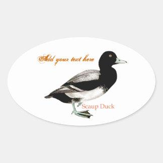 Scaup Duck Oval Sticker