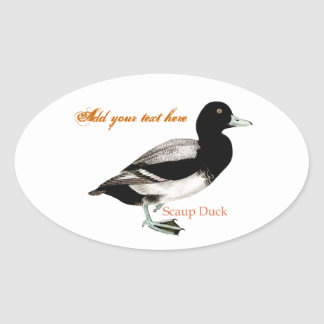 Scaup Duck Stickers