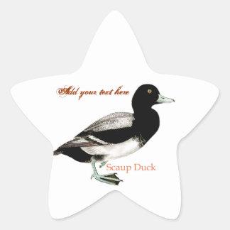 Scaup Duck Star Sticker