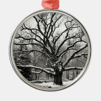 Scene Bedford Oak New York Metal Ornament