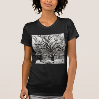 Scene Bedford Oak New York T-Shirt