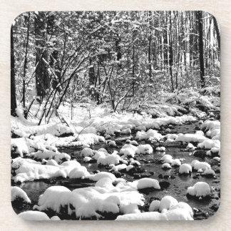 Scene Icy Cold River Ontario Coaster