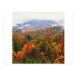 Scene Lush Landscape Appalachian Carolina Post Cards