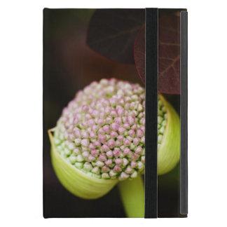 scene pristine iPad mini case