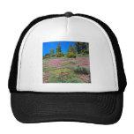 Scene Springtime Sierra Foothills California Mesh Hats