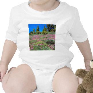 Scene Springtime Sierra Foothills California Tshirt