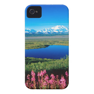 Scene Tundra Mount Mckinley Denali Alaska iPhone 4 Case-Mate Case