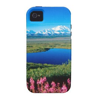 Scene Tundra Mount Mckinley Denali Alaska iPhone 4 Cover