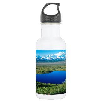 Scene Tundra Mount Mckinley Denali Alaska Stainless Steel Water Bottle
