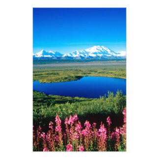 Scene Tundra Mount Mckinley Denali Alaska Stationery