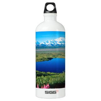 Scene Tundra Mount Mckinley Denali Alaska Water Bottle