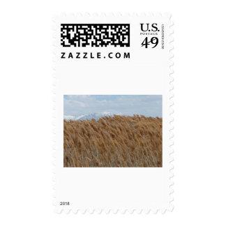 scenery 2 postage