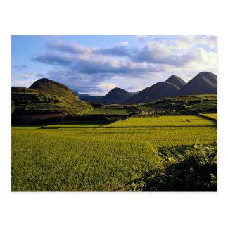 Scenery between Kaili and Qinghai Guizhou Provinc Postcard