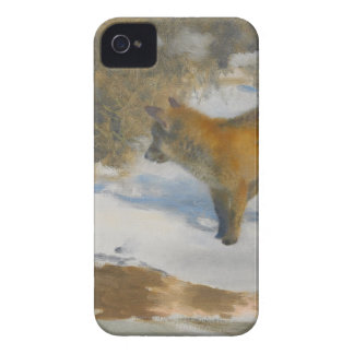 Scenery of fox and winter Case-Mate iPhone 4 case