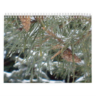 Scenery of Seasons Calendar