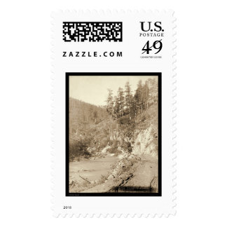 Scenery on Deadwood Road to Sturgis SD 1888 Postage Stamp