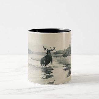 scenery photograph with moose mug