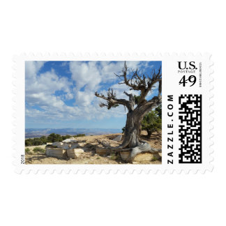 Scenery stamp