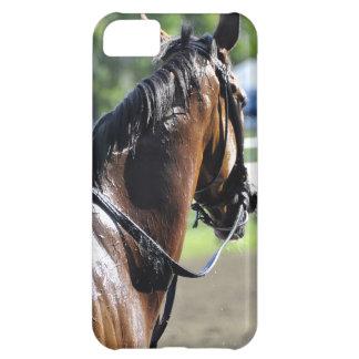 Scenes from Saratoga iPhone 5C Case