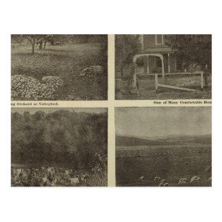 Scenes Inland Empire Postcard