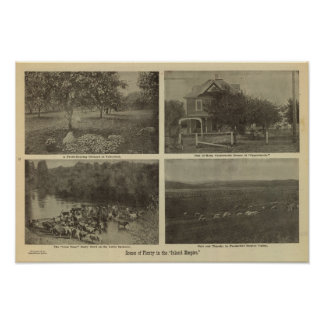 Scenes Inland Empire Poster