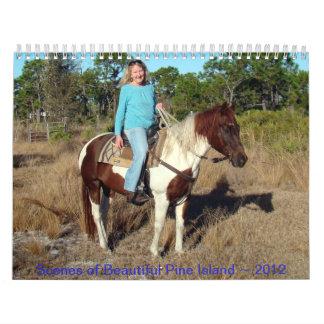 Scenes of Beautiful Pine Island ~ 2012 Calendar